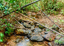Rzeczny spływanie przez skał w dżungli Obraz Stock