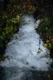 Rzeczny spływanie przez zieleni w jesieni zdjęcie stock