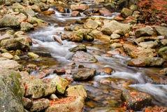 Rzeczny strumień z skałami i jesień liśćmi Fotografia Stock