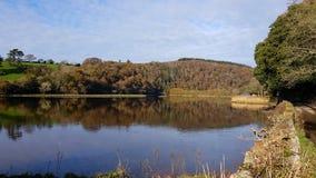 Rzeczny Tavy Lopwell dartmoor devon Obraz Royalty Free