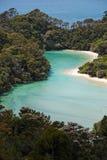 Rzeczny ujście przy Abel Tasman parkiem narodowym zdjęcia royalty free
