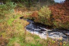 Rzeczny Wansbeck opuszcza Sweethope Lough Fotografia Royalty Free