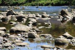 Rzeczny Wharfe, Yorkshire doliny park narodowy, Anglia Zdjęcia Stock