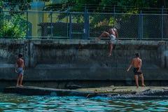 Rzeczny widok ch?opiec bawi? si? przy zatok? Dzieci skacze w wod? zdjęcie royalty free