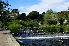 Rzeczny Wye, Bakewell Zdjęcia Royalty Free