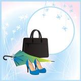 rzeczy modna elegancka kobieta Zdjęcie Stock