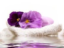rzeczy spa purpurowych Fotografia Royalty Free