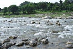 Rzeka Obrazy Royalty Free