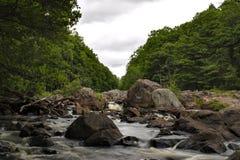 Rzeka Zdjęcia Stock