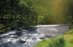 rzeka. obrazy royalty free