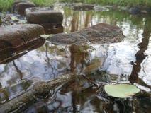 Rzeka Fotografia Royalty Free