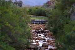 Rzeka - Algieria, Cedarberg Zdjęcia Stock
