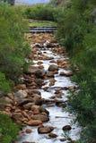 Rzeka - Algieria, Cedarberg Obraz Stock