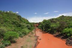 rzeka błotnista Fotografia Stock