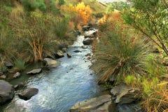 rzeka bieżąca Obrazy Stock