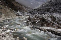 rzeka bieżąca Fotografia Royalty Free