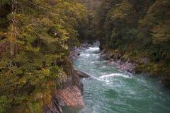 Rzeka bieg Fotografia Royalty Free