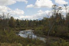 Rzeka biega Fotografia Royalty Free
