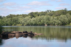 rzeka brzegu rzeki Zdjęcia Royalty Free