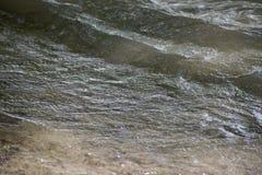 rzeka dunaj Zdjęcia Royalty Free