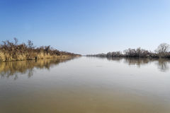 Rzeka Evros w jesieni Fotografia Royalty Free