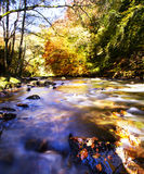 Rzeka Głęboko Zdjęcie Royalty Free