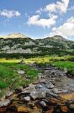 Rzeka halny krajobraz Fotografia Royalty Free