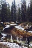 Rzeka i śnieg zdjęcia royalty free