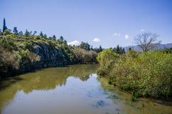 Rzeka i drzewa Obrazy Stock