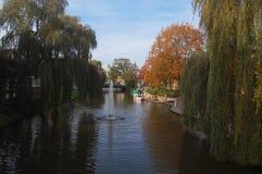 Rzeka i drzewa w Nordhorn, Niemcy zdjęcia royalty free