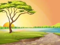 Rzeka i drzewo ilustracja wektor