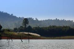 Rzeka i góra Obraz Stock