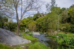 Rzeka i jesień kolorowy las Zdjęcia Royalty Free