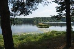 Rzeka i mała wyspa w lecie Fotografia Stock