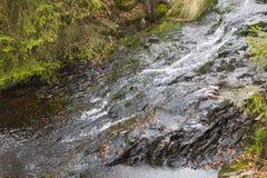 Rzeka I łupek, Ardennes, Belgia Fotografia Stock