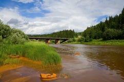 rzeka jest skażona zdjęcie royalty free