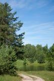 Rzeka krajobraz Obraz Stock