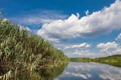 Rzeka krajobraz Obrazy Royalty Free