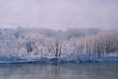 Rzeka krajobraz w zimie Zdjęcie Stock