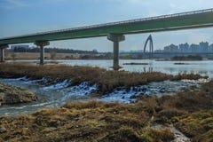 Rzeka krajobraz z budynkami i mostem Zdjęcia Royalty Free