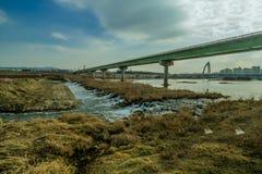 Rzeka krajobraz z budynkami i mostem Obraz Royalty Free