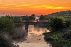 Rzeka krajobraz z drzewami obraz royalty free
