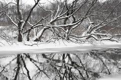 Rzeka krajobraz zimą Zdjęcia Royalty Free
