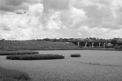Rzeka krzak zdjęcie stock