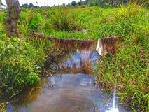 Rzeka która iść miasteczko Zdjęcia Stock
