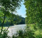 Rzeka która płynie przez lasu terenu Zdjęcie Royalty Free