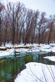 Rzeka która płynie w lesie w zimie obraz stock
