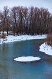 Rzeka która płynie w lesie w zimie obrazy stock
