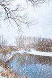 Rzeka która płynie w lesie w zimie zdjęcie stock