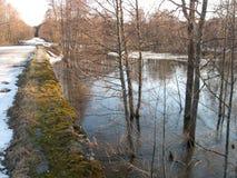 Rzeka, las Zdjęcia Stock